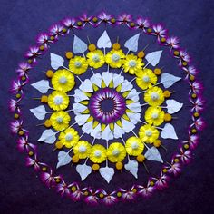 Using the flower petals of carnations, daisies, mums and other wildflowers Arizona-based artist Kathy Klein (previously) creates temporary mandalas in outdoor locations near her home. She calls the pieces danmalas ('the giver of garlands' in Sanskrit), and each piece is photo