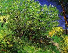 Vincent van Gogh. Lilacs   Василий Б   Flickr