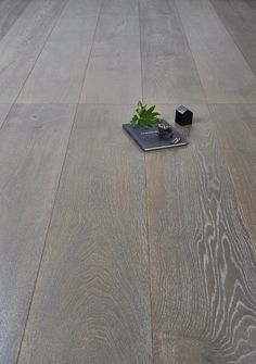 French Grey is a light to mid toned warm grey European Oak engineered timber flooring Grey Floorboards, Grey Wood Floors, Grey Flooring, Flooring Ideas, Floating Floorboards, Basement Flooring, Vinyl Flooring, Laminate Flooring, Grey Hardwood