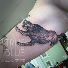 Nasty little wolfman done by Stefan Draak Professional Tattoo, Tattoo Studio, Drake, Tattoos, Blue, Animals, Tatuajes, Animales, Animaux