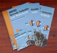 Cursus Spaans Intensief ochtend in Amsterdam bij Animo, Academia de espanol y holandés