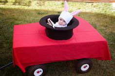 Magic rabbit in a hat on a table (in a wagon)