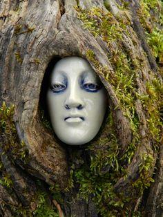 In my backyard; Diane Briegleb's face