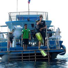 D I V I N G. - : @world_dive_center : Phi Phi Islands Thailand. by intravelist