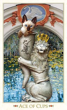 Cat Art...=^.^=...♥ The Ace of Cups...