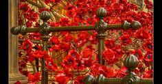 Final chance to visit the stunning WWI artwork at St George's Hall