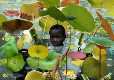 world-6 / Ruud van Empel works and lives in Amsterdam