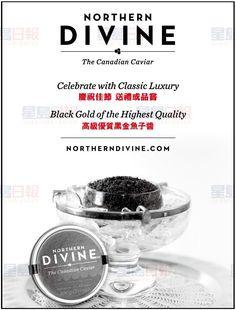 NORTHERN DIVINE CAVIAR | 星島商業廣告網