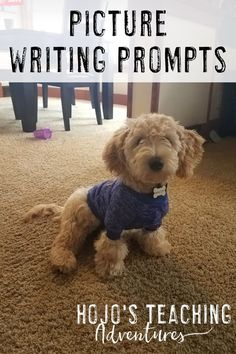 Learn how to use picture writing prompts to keep elementary students engaged, writing, and having fun with the great ideas and suggestions here. Picture Writing Prompts, 3rd Grade Classroom, Year 2, Upper Elementary, Literacy Centers, Special Education, Fun Activities, Writers, Middle School
