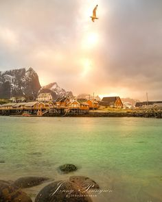 🏔️🇳🇴 Norway Love 🇳🇴🏔️ Left my heart at Lofoten again 🤗💕 Ohh these sights. Happy weekend sweethearts 🤗💕 had to sleep after the roadtrip,… Lapland Finland, Lofoten, Happy Weekend, Norway, My Heart, Road Trip, Sleep, River, Adventure