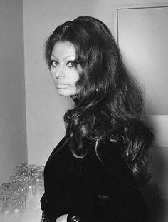 Sophia Loren ca Old Hollywood Stars, Hollywood Glamour, Hollywood Style, Marlene Dietrich, Brigitte Bardot, Classic Beauty, Timeless Beauty, Divas, Queen Sophia