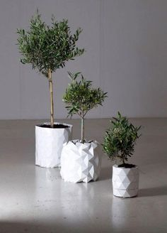 Creative design ideas surprise and delight. Growing with plants planters are very convenient and practical. These modern planters eliminate the need to replant plants from a small to a larger planter and make gardeners life easier. Lushome presents creative design ideas that transformed traditional