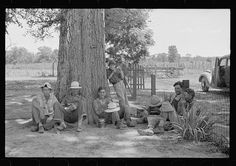 1935 cotton pickers stop for lunch on the Stortz cotton plantation (near Little Rock, in Pulaski County Arkansas)