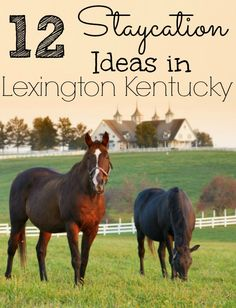 12 Staycation Ideas in Lexington Kentucky - Roadschooling with The Frugal Navy Wife