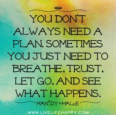 You don't always need a plan. Sometimes you just need to breathe, trust, let go, and see what happens. -Mandy Hale