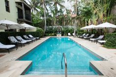 Make your Palm Beach vacation extra special by staying in one of the area's best luxury hotels, where top-notch eateries and relaxing spas come standard. Palm Beach Resort, Palm Beach Florida, Resort Spa, Florida Trips, Luxury Hotels, Best Hotels, Palm Beach Island, Spa Prices, All Flights
