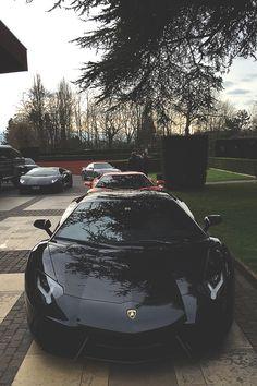 Black bull | Lamborghini