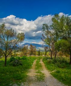 February 25 – Photos from walks. Photo Walk, Rainy Weather, Argos, Sunny Days, Greece, Country Roads, Nature, Photos, Greece Country