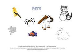 PETS Autorem materiálu a všech jeho částí, není-li uvedeno jinak, je Mgr. Rita Náplavová. Dostupné zMetodického portálu www.rvp.cz, ISSN:1802-4785, financovaného.> Snoopy, Bird, Fictional Characters, Author, Birds, Fantasy Characters