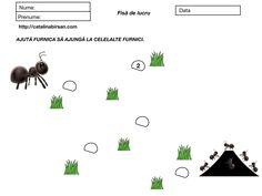 12 fise de lucru. Exersarea numerelor (1-5, 1-10). – Catalina Bîrsan Peanuts Comics, Insects