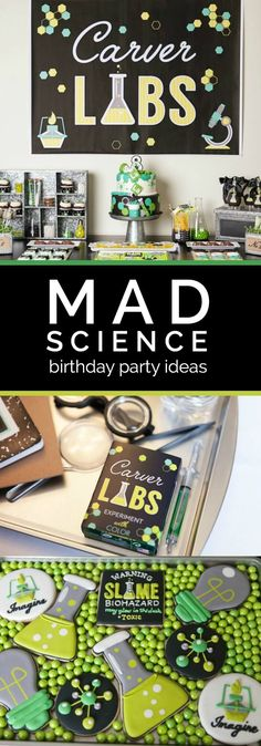 A Boy's Laboratory Science Birthday Party More