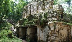 6 Mayan Archaeological Sites You Must Visit in Mexico Yaxchilán, Chiapas (Journey Mexico)
