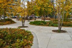 Joel_Weeks_Park-Janet_Rosenberg-Studio-08 « Landscape Architecture Works | Landezine