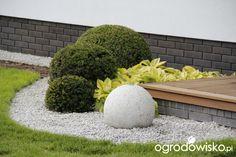 Ogrodowy powrót do dzieciństwa. - strona 400 - Forum ogrodnicze - Ogrodowisko