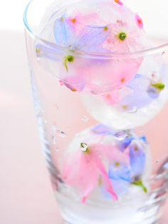 edible flowers in ice cubes - 丸氷はかわいいけれど、花が思った通りの位置にいかなかった・・・
