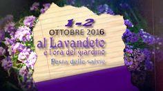 Assisi Festa delle salvie 1 e 2  ottobre 2016: Mostra di florovivaismo