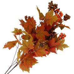EUR 0.79 - herfst tak ca.70cm - 100 Nieuwste  - Action Nederland B.V.