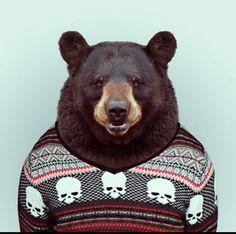 Hilarious Zoo Portraits by Yago Partal