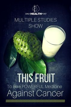 Multiple Studies Show THIS Fruit To Be a Powerful Medicine Against Cancer via /dailyhealthpost/ | http://dailyhealthpost.com/soursop-fights-cancer/
