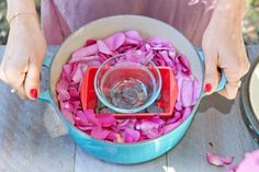 making rose water, DIY rose water toner, The Local Rose, Shiva Rose