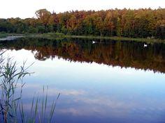 Moje Jezioro