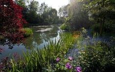 Claude Monet's Garden in Giverny France by Joeysie