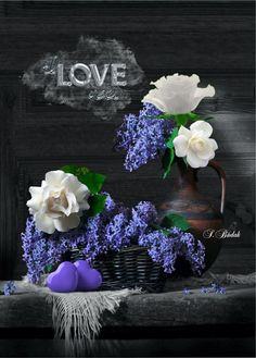 Risultati immagini per sabri budak Grey Pictures, Romantic Pictures, Beautiful Pictures, Flowers Nature, Beautiful Flowers, Love Is Everything, Good Night Wishes, Purple Art, All Things Purple