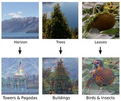 Google's artificial neural network often found similar patterns in images of rocks or trees.