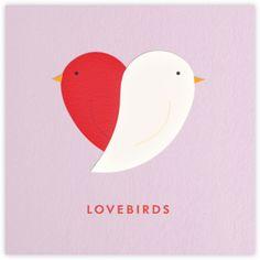 #yearofadeventure lovebirds