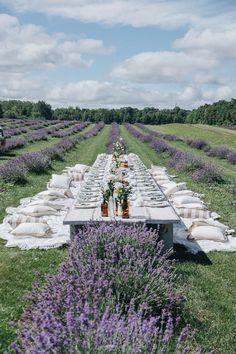 white brunch table in lavender fields Lavender Aesthetic, Deco Floral, Lavender Fields, Lavander, Flower Farm, Farm Gardens, The Ranch, Farm Life, Beautiful Places
