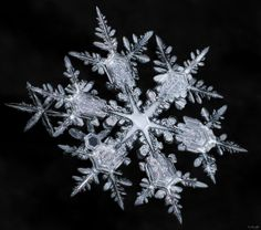 """Le photographe canadien Don Komarechka photographie des flocons de neige en macro et publie son livre """"Sky Crystals: Unraveling the Mysteries of Snowflakes"""" Sandro Giordano, Snowflake Photography, Snowflake Images, I Love Snow, Fotografia Macro, Ice Crystals, Winter Scenery, Snow And Ice, Foto Art"""