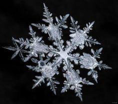 Starburst Snowflake