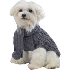 dog sweater pictures | Buy Tiny Dog Clothes | Organic Wool Gray Cable Knit Dog Sweater