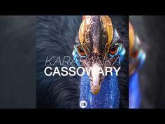 Karabanka - Cassowary   Listen to my EDM track  Enjoy.
