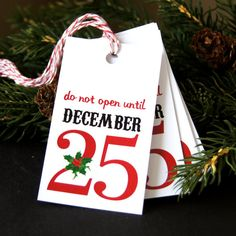 Do No Open Until December 25 Christmas Tags by Scrap Bits