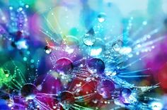 This HD wallpaper is about Bokeh Shot of Water Droplets, blur, blurred background, bright, Original wallpaper dimensions is file size is Blurred Background, Textured Background, Original Wallpaper, Hd Wallpaper, Bubbles Wallpaper, Free Pictures, Free Images, Water Droplets, Cool Stickers