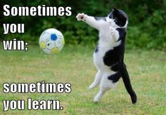 Growth Mindset Cats: Sometimes you win; sometimes you learn.