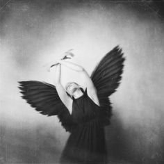 by Josephine Cardin White Art, Black And White, Human Photography, Erin Hanson, What If You Fly, Josephine, Out Of My Mind, Black Wings, Surrealism