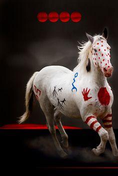 Painted Warrior – Blackfeet Shoot The War Pony Project by Brady Willette