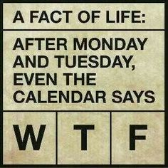 Exceptional After Monday And Tuesday, Even The Calendar Says WTF Great Pictures